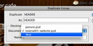 duplicate-02